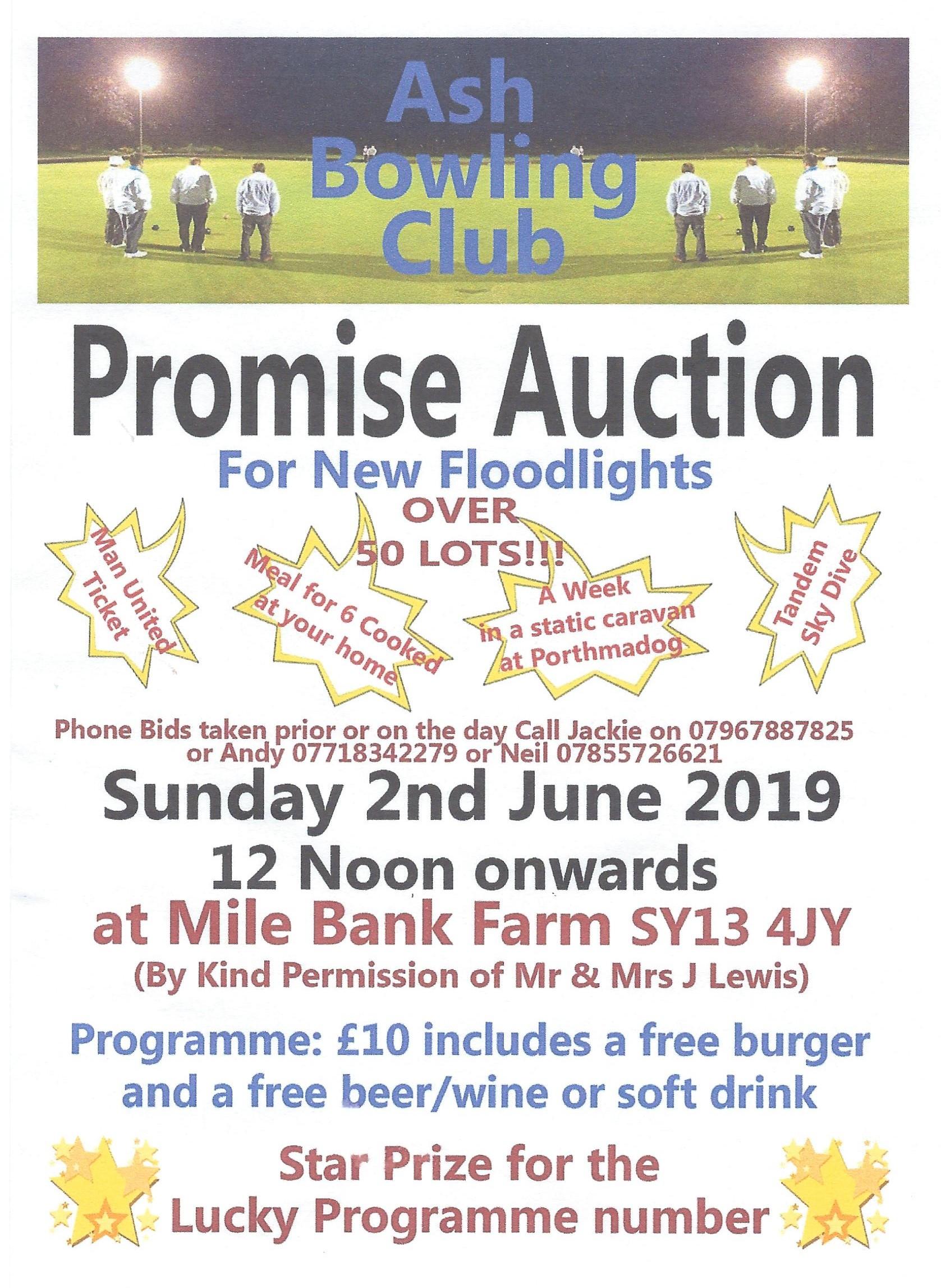 promise auction1